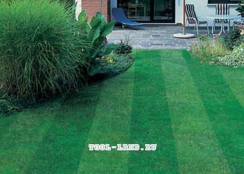 Газон с разным оттенком травы