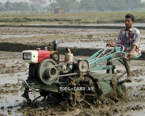 Мотоблок бангладешского фермера, работающий на рисовом поле